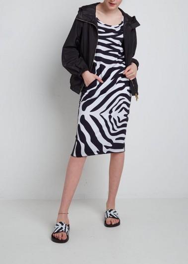 Zebra mania!